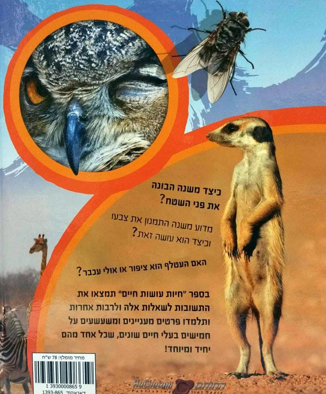 חיות עושות חיים-קשטן, אורית537