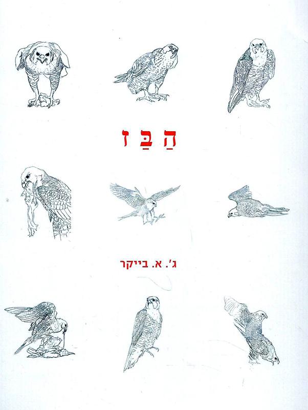 הבז-ביקר, ג'. א.290
